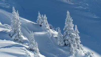Започват снеговалежи